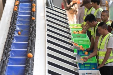 菜鸟升级乡村两个一公里物流在20个农产品核心产区增开物流中心