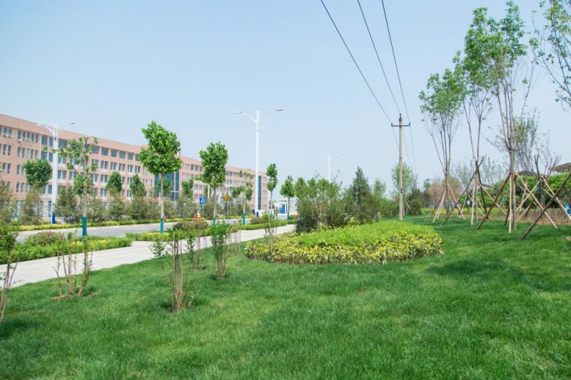 西安航空基地再添绿色生态新景观